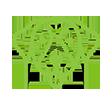 cao-guia-icone